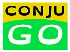 conjugaison_speed